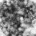 MS000360-350 HatchingF-5