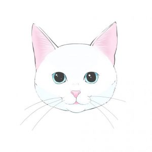 How to draw a cat (1) How to draw a basic face