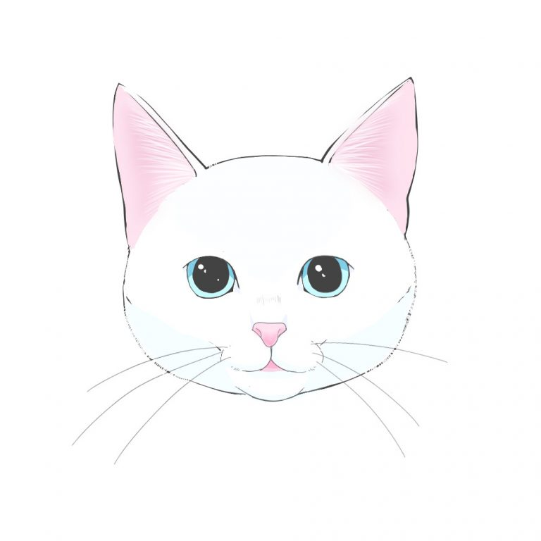 How To Draw A Cat 1 How To Draw A Basic Face Medibang Paint