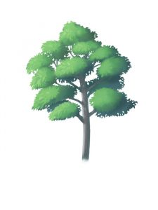 How to draw a tree 2 [from trunk to finish]