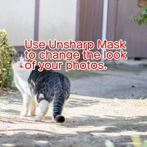 Use Unsharp Mask to change the look of your photos.