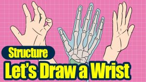 Let's draw wrists! ~Understanding Structure〜