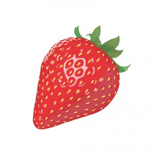 ¡La primavera es la temporada de las fresas! Cómo dibujar una fresa