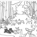 MI000106 Wildlife