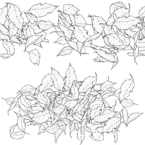 Листья (большие)