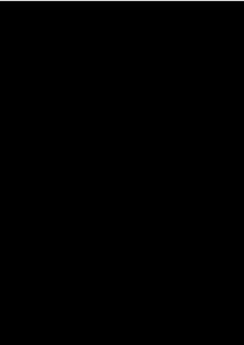 ガーベラ2