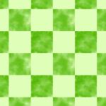 Checkered 19 (Small)