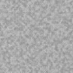 MS000303-350 布生地1