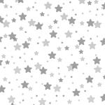 MS000157-350 星1