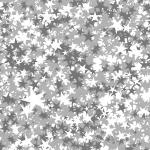 MS000158-350 星2