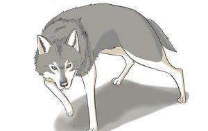 狐と狼の描き方