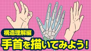 手首を描いてみよう!~構造理解編~