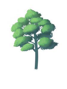 如何画一棵树 (1) [从基部到叶子]