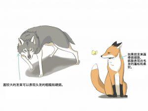 狐狸和狼怎么画