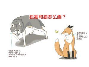 狐狸和狼怎么画?