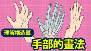 手部的畫法-理解結構篇